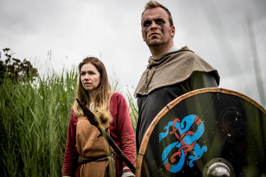 Viking shields ben carine 1