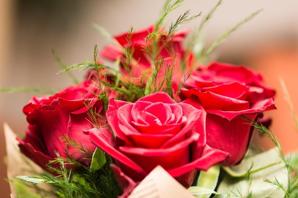 Flower 3127810 960 720